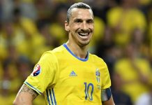 Zlatan Ibrahimovic milli takıma alınmayacak