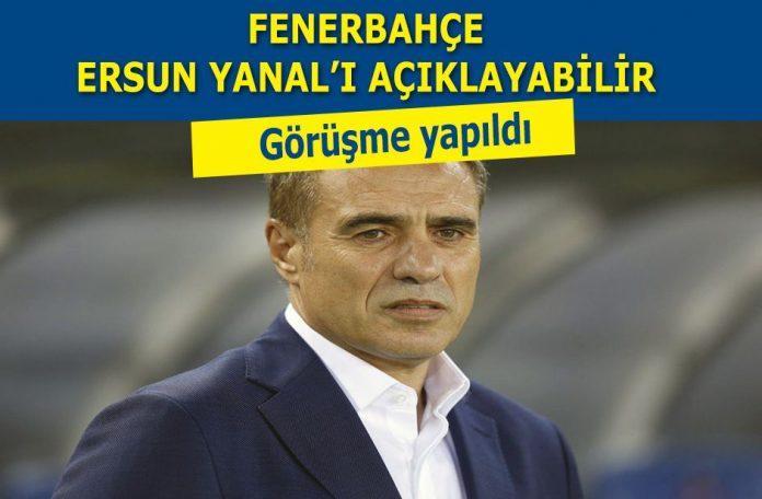 Fenerbahçe Ersun Yanal